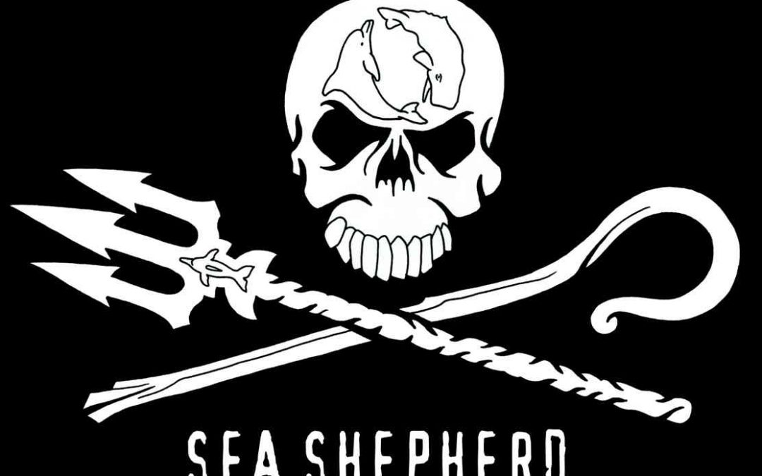Sea Shepherd ha vinto!